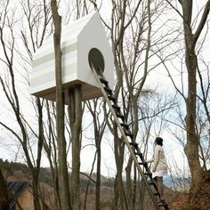 Bird-apartment by Nendo    This enormous woodland nesting box has 78 entrances for birds on one side and one big door for humans on the other.
