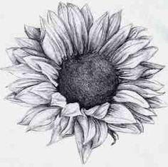 Sunflower tattoo - just add a few fallen petals and dried out seeds (shoulder/arm tattoo)