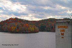 Yatesville Lake State Park in Louisa, Kentucky. Photo Credit:  Velvet Brown-Childers #kentucky