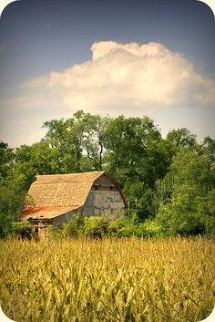 Farm scene in Nebraska  I know that barn