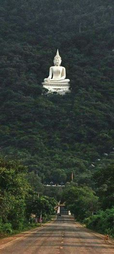 The giant Buddha statue located in Kamakura, Thailand