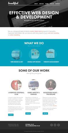 Brandified - Web Design and Development - Webdesign inspiration www.niceoneilike.com