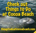 Things to do in Cocoa Beach