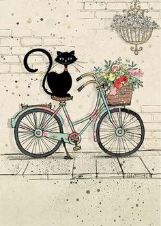 Bike Cat - Bug Art greeting card Ironic isn't it? I Love Cats, Crazy Cats, Cute Cats, Illustration Art, Illustrations, Bug Art, Cat Cards, Greeting Cards, Here Kitty Kitty