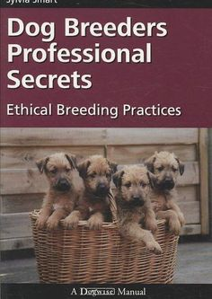 Becoming a dog breeder is a significant undertaking. And there is so much more you need to know to be a successful breeder beyond just knowing how to whelp and raise puppies. Dog Breeders Professional
