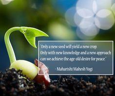 """Only a new seed will yield a new crop.''  - Maharishi Mahesh Yogi"