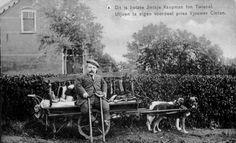 'Dit is liefste Jintsje Kaepman fon Twiezel. Utjoen ta eigen voordeel pries Vjouwer Cinten.'  Koopman Jentje van der Land uit Twijzel, met zijn door honden getrokken handelskar. Ansichtkaart, circa 1915.