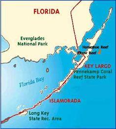 Hope to scuba dive Key Largo Reef soon