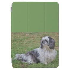 Lhasa Apso iPad Pro Cover - dog puppy dogs doggy pup hound love pet best friend