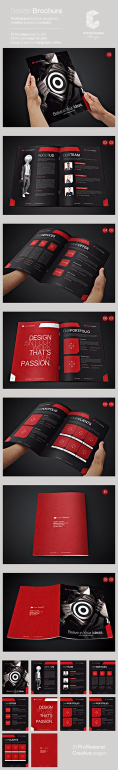 Profesional Brochure Template
