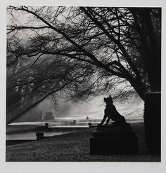 "Michael Kenna (American, b. 1953), ""Guardian Wolf, Courances, France,"" 1997/1998, gelatin silver print"