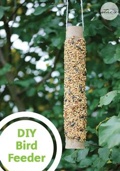 Make your own DIY Bird Feeder with an empty Bounty Paper Towel roll and some birdseed. The kids will love getting their hands messy for this fun spring craft project.