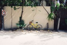 Hiring a bike is a great way to get around Tulum, Mexico