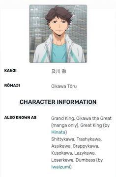 Oikawa X Iwaizumi, Iwaoi, Bokuaka, Kageyama, Boko No, Volleyball Anime, Haikyuu Funny, Karasuno, Webtoon