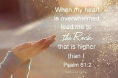Psalm 61:2  God is so good - even in the midst of trials & tribulation his mercies through Jesus are new everyday to his children. Thank you Lord, you are our everything...