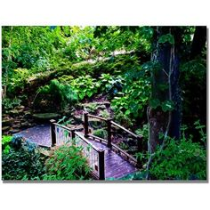 Trademark Art Bridge in the Garden of Light Canvas Wall Art by Kathie McCurdy, Size: 18 x 24, Multicolor