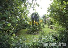 Vihreät kehykset tuovat jännitystä puutarhaan. Näkymän kruunaa mielenkiintoinen istutus. www.kotipuutarha.fi