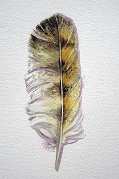 Buho pluma estudio pluma Acuarela Original de una por jodyvanB