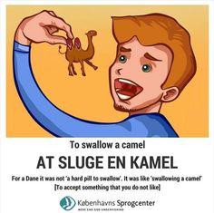 At sluge en kamel Danish Language, Danish Words, Cooperative Learning, Idioms, Study Abroad, Learn To Read, Copenhagen, Proverbs, Preschool