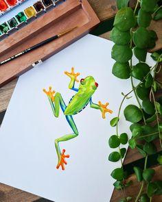 Frog watercolor illustration by Studio Sonate Frog Illustration, Watercolor Illustration, Studio, Drawings, Prints, Etsy, Vintage, Ideas, Design