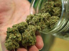 Indoor Seeds UKhttp://buymarijuana.co.uk/cannabis-seeds/indoor