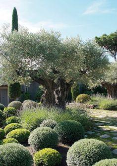 Picture Of eye catching mediterranean garden decor ideas  6