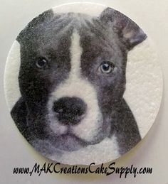 """PITBULL Cupcakes Set of 12 Pre Cut Edible Wafer Cupcake & Cookie Toppers. Each Measure 2 1/2"""" Round. Pibull Design"""