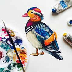 Day 39 of my #100birds #100dayproject a colourful Mandarin Duck from East Asia #bird #duck #art #painting #illustration #colour #arts_help #art_we_inspire #craftsposure #sketchbook #studio #charlotteduffydesigns #gouache #winsornewton #the100dayproject #100daysofbirds #artdaily2015