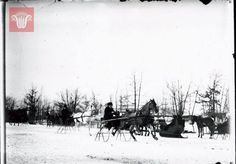 Racing sleighs on Park Avenue, c. Want a copy of this photo? Worcester Massachusetts, Massachusetts Usa, Park Avenue, American History, Christmas Time, Vintage Christmas, Growing Up, Places To Visit, Gilded Age