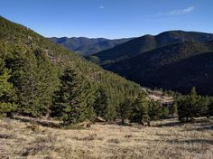 Roosevelt National Forest. Couldn't resist pulling over for a spontaneous hike #hiking #camping #outdoors #nature #travel #backpacking #adventure #marmot #outdoor #mountains #photography