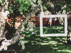 Puusta roikkuu