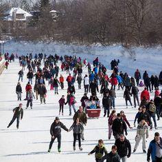 "GANKOR TOURS/Chris on Instagram: ""#rideaucanal #largest #skatingrink #ottawa #canada 🇨🇦 #makethebestofacoldday ☃️ #travel #tourism #destinationtravel #tours #daytours…"" Travel Tourism, Travel Destinations, Ottawa Canada, Skating Rink, Day Tours, Street View, Instagram, Road Trip Destinations, Destinations"