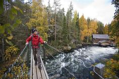 Bear Lap / Bear Tour, a hiking trail / route 12 km, Finland -  Karhunkierros Rundweg (12 km)