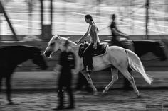 Location, Horses, Animals, Environment, Photoshoot, Pictures, Animaux, Animales, Horse