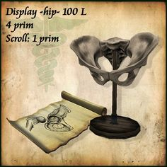 Display Hip and Scroll, for Physician, Role play and much more