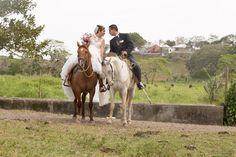 Horses, Animals, Beach, Weddings, Animaux, Horse, Animal, Animales, Animais
