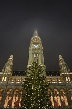 City Hall at Christmas - Vienna, Austria