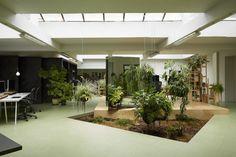 #Office #Tuesday – Random Studio: kantoor met huiskamergevoel. Open ruimte met veel planten en mini-tuintjes.