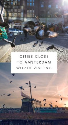 I will describe shorly each and every town on this list and on the end of article I mention the best ways to travel The Netherlands. I am going to share with you some tips and tricks so travelling won't be a pain in the ass but a great adventure. #travel #amsterdam #travelbucketlist #Iamsterdam #visitamsterdam #traveldestinations  travel bucket list travel destinations Travel tips Travel ideas travel the world travel inspiration travel alone travel amsterdam amsterdam  netherlands holland