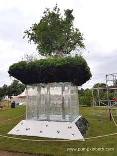 Miracle/Elements of Life was designed by Bill Wilder and built by Wilder Gardens. This Conceptual Garden was awarded a Gold Medal and the prestigious title of Best Conceptual Garden, at the RHS Hampton Court Palace Flower Show