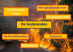 Bestand:Bosbranden.jpg