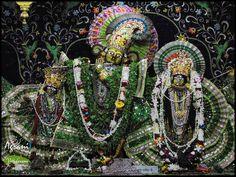 Sri Sri Radha Damodara, Vrindavana www.vrindavana.org
