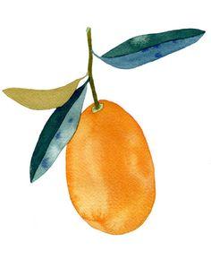 """Kumquat"" Illustration by Emily Proud"