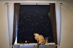Rullgardin med stjärnhimmel av Jess Karlsson Curtains, Diy, Home Decor, Blinds, Decoration Home, Bricolage, Room Decor, Do It Yourself, Draping