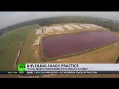 Drone footage exposes US factory farm reality incl football-pitch sized 'cesspool' Football Pitch, Factory Farming, Eat To Live, Body Detox, Plant Based Recipes, Raw Vegan, Health And Wellness, Military Operations