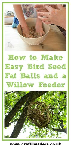 Our home-made Willow bird feeder and Bird Seed Fat Cakes are a great way to feed the birds up in the trees or in your garden.