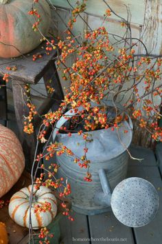 Watering can with Bittersweet vine| http://homeiswheretheboatis.net #PottingShed #fall
