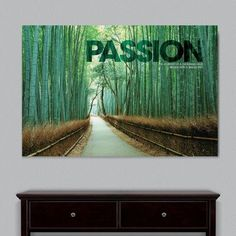 "Successories Infinity Edge Passion Bamboo Path Motivational Graphic Art Size: 16"" H x 24"" W x 0.75"" D"