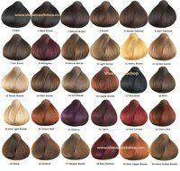 Sanotint Classic hair colour 30 colours * Vivasan Webshop