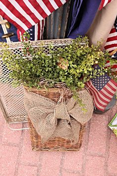 Burlap and a plant.